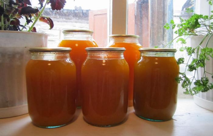 Свежий тыквенный сок в домашних условиях