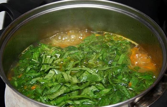 Щавелевый суп курицей рецепт фото