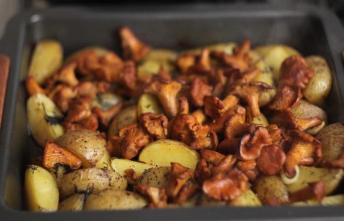 Как запечь лисички с картошкой в духовке рецепт